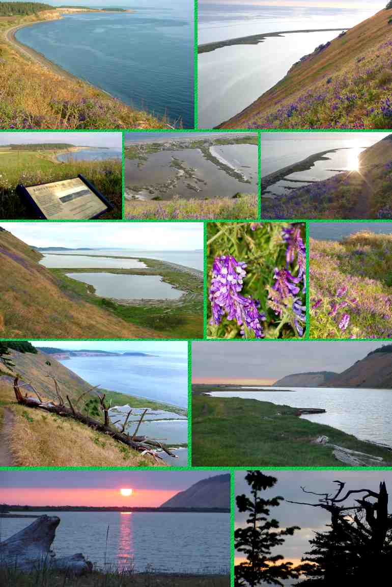 Ebey's Landing: Views of Perego's Lagoon on the 3.5-mile hike - 6/10/03