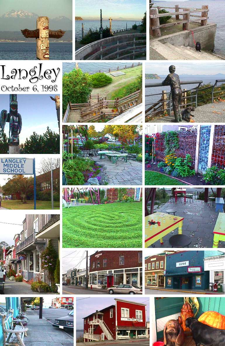 Village of Langley Collage