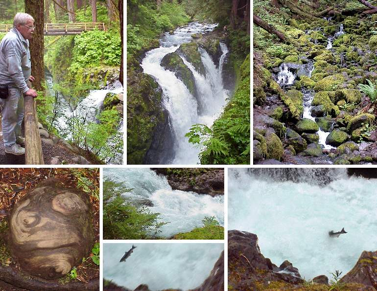 Sol Duc Falls and Salmon Cascade