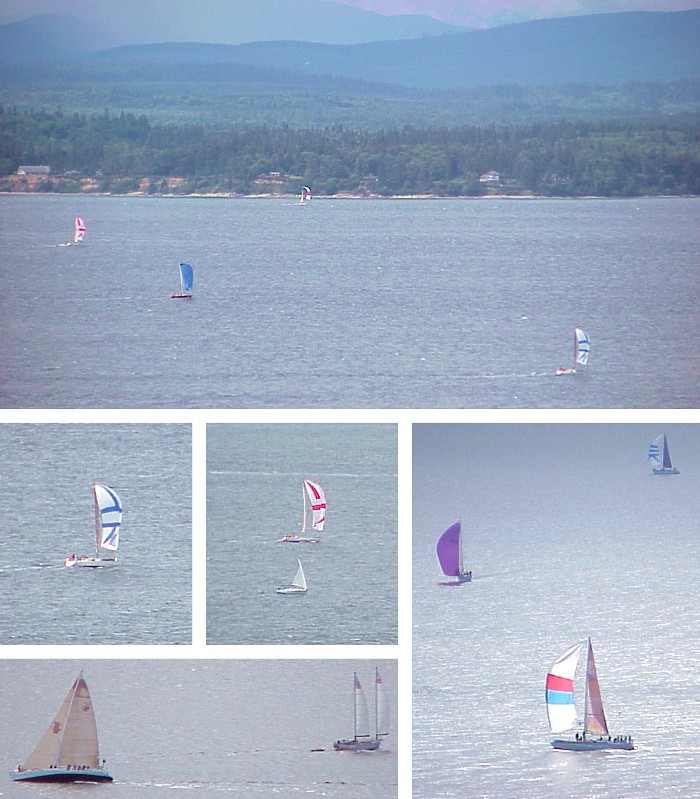 More Saturday Sailboats - June 10, 2000